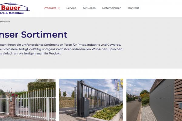 Bauer Tore und Metallbau online Produkte